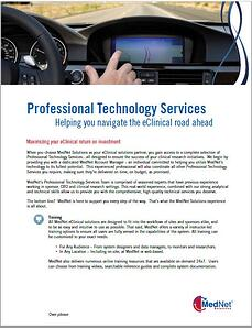 Professional Technology Services